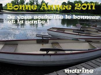 bonneannee2011.jpg